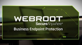 video endpoint protection enterprise